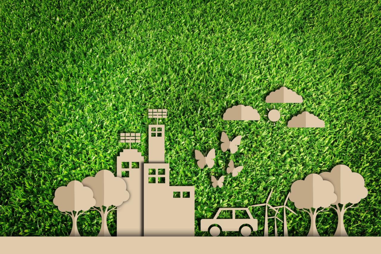 I CAM (I criteri ambientali minimi) nascono in seno al Piano per la sostenibilità ambientale dei consumi del settore della pubblica amministrazione e sono adottati con Decreto del Ministro dell'Ambiente